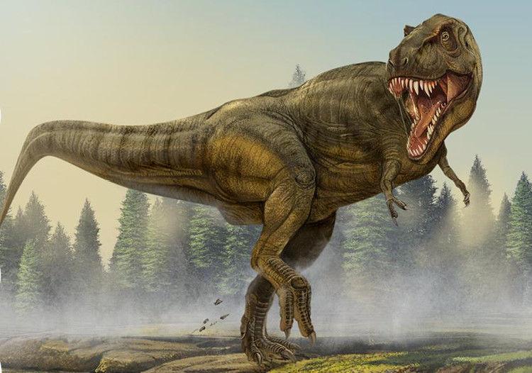霸王龙: 霸王龙生存于白垩纪末期的马斯特里赫特阶(MAA)距今约6850万年到6550万年的白垩纪最末期,是白垩纪-第三纪灭绝事件前最后的非鸟类恐龙种类之一。化石分布于北美洲的美国与加拿大,是最晚灭绝的恐龙之一,也是陆地史上已知的最强的食肉动物。 绘画步骤: :开始先画一个鸡蛋;